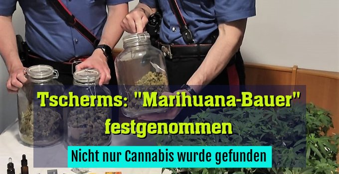 Nicht nur Cannabis wurde gefunden