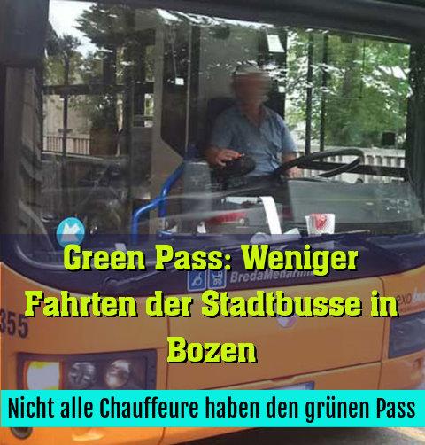 Nicht alle Chauffeure haben den grünen Pass