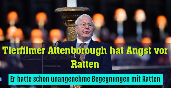 Attenborough hatte schon unangenehme Begegnungen mit Ratten