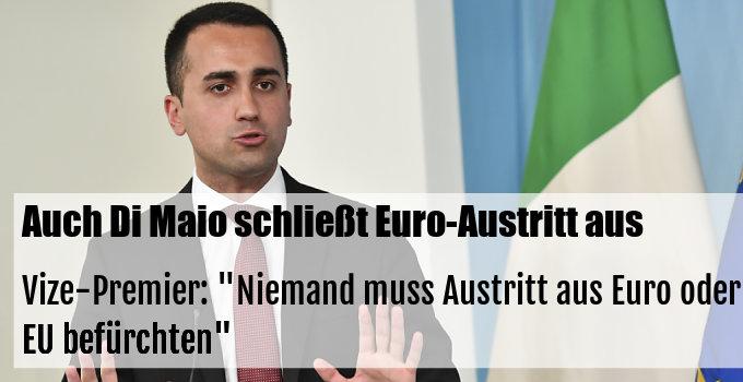 """Vize-Premier: """"Niemand muss Austritt aus Euro oder EU befürchten"""""""