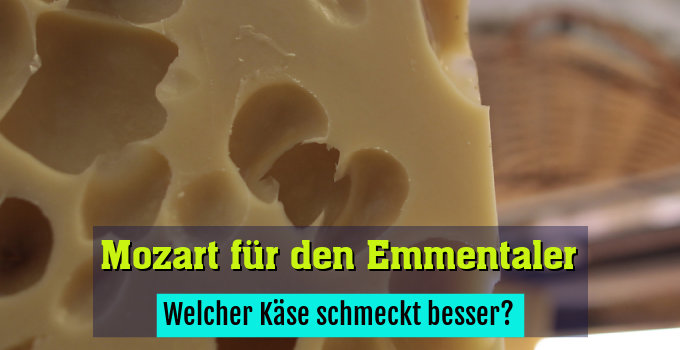 Welcher Käse schmeckt besser?