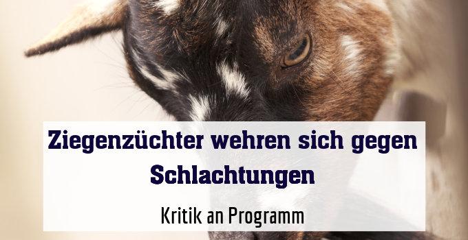 Kritik an Programm