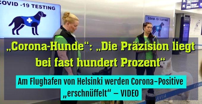 """Am Flughafen von Helsinki werden Corona-Positive """"erschnüffelt"""" – VIDEO"""