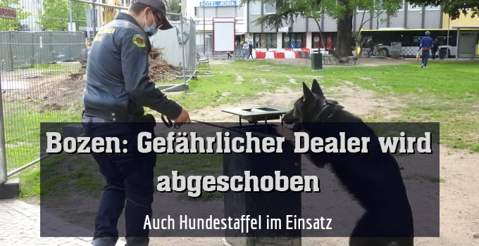 Auch Hundestaffel im Einsatz