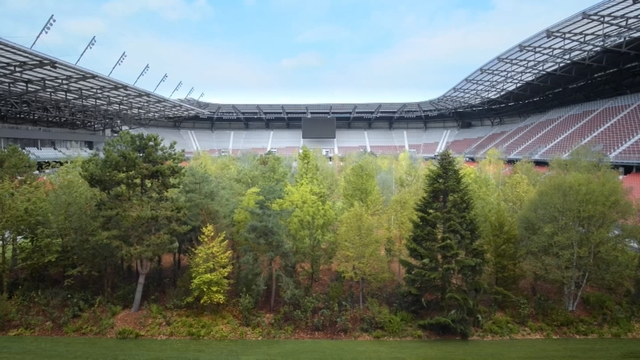 Ein Stadion Voller Baume Sudtirol News