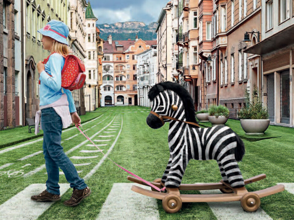 lpa-plakat-sos-zebra_04