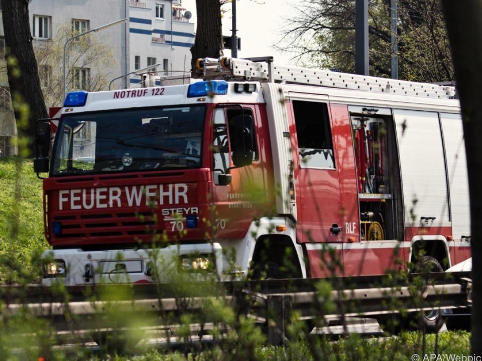 Sechs Feuerwehren versuchten den Brand zu löschen symb