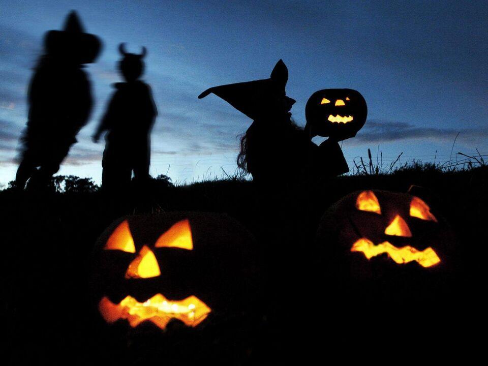 Vorbereitungen für Halloween kürbis