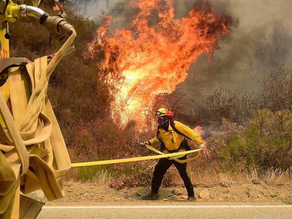 waldbrand Das Feuer brach aus bisher unbekannter Ursache aus