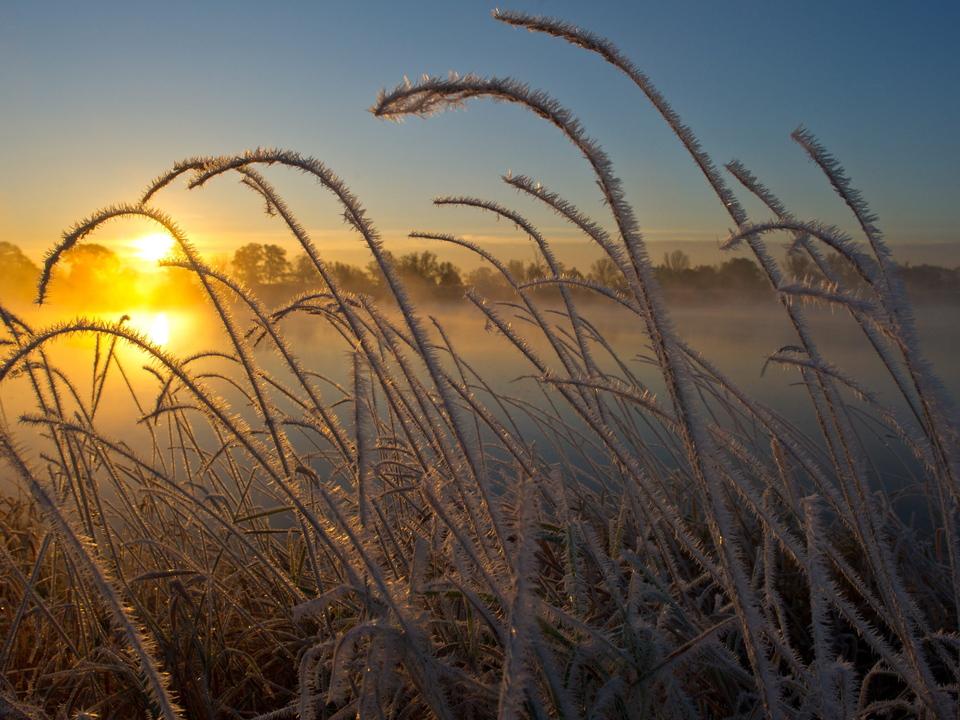 winter frost sonnenaufgang eis