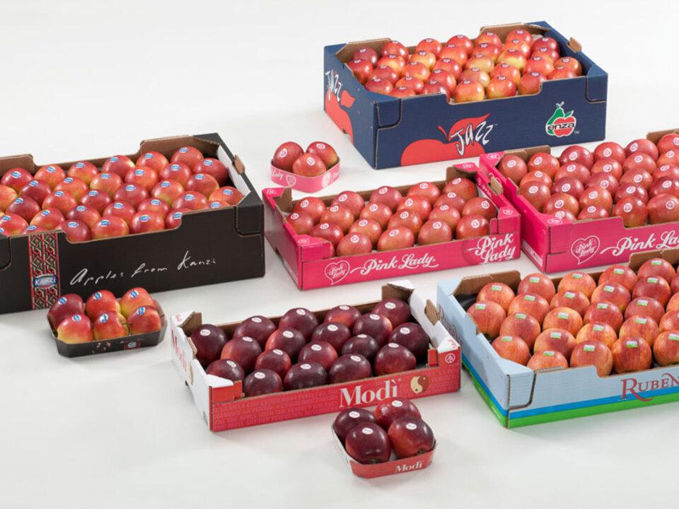 VOG_Club_apples-Apfel