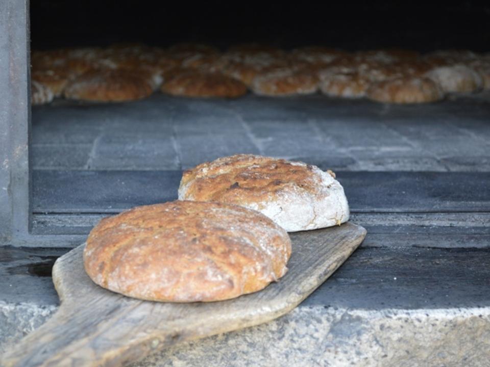 Brotbacken-lpa