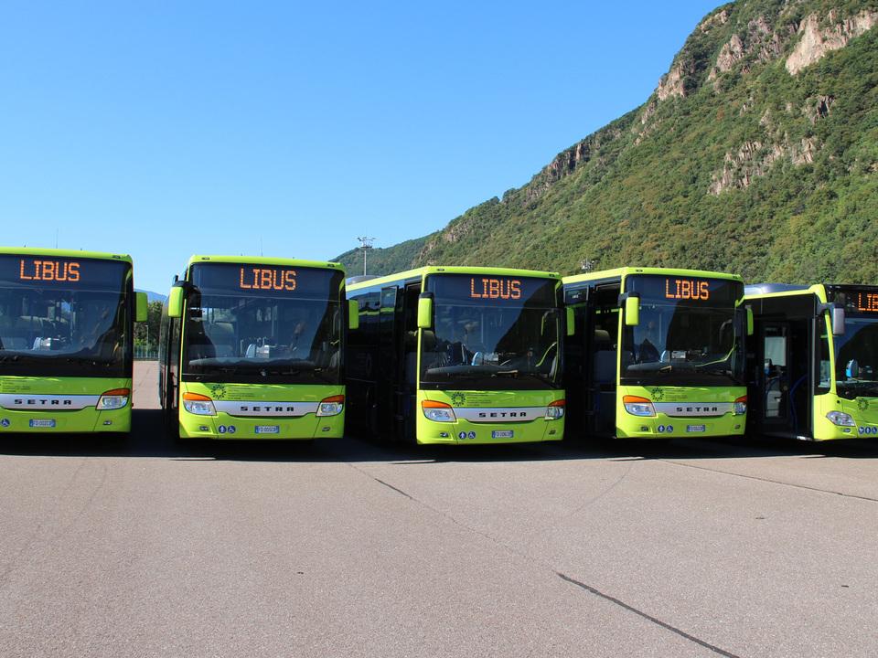 bus-libus-lpa