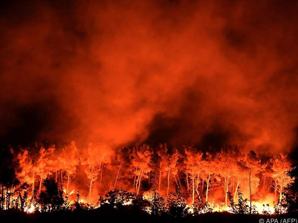 waldbrand feuer Die Waldbrände wüten weiter