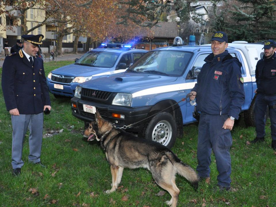 quaestur-hundestaffel-polizei