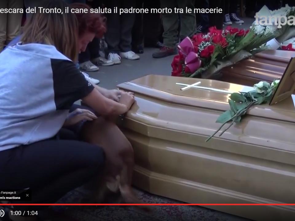 Terremoto Pescara del Tronto, il cane saluta il padrone morto tra le macerie Youtube/Fanpage.it