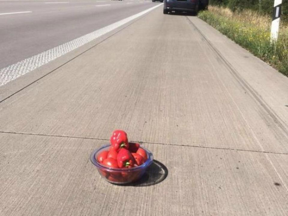Tomaten auf Straße-Twitter-Polizei ST PD Nord