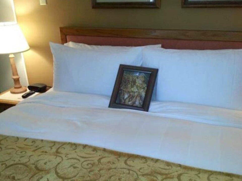 hotelzimmer-speckbild-imgur