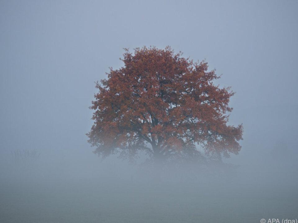 Herbst Oktober Nebel, Regen, kühle Temperaturen und zum Teil sogar Schnee