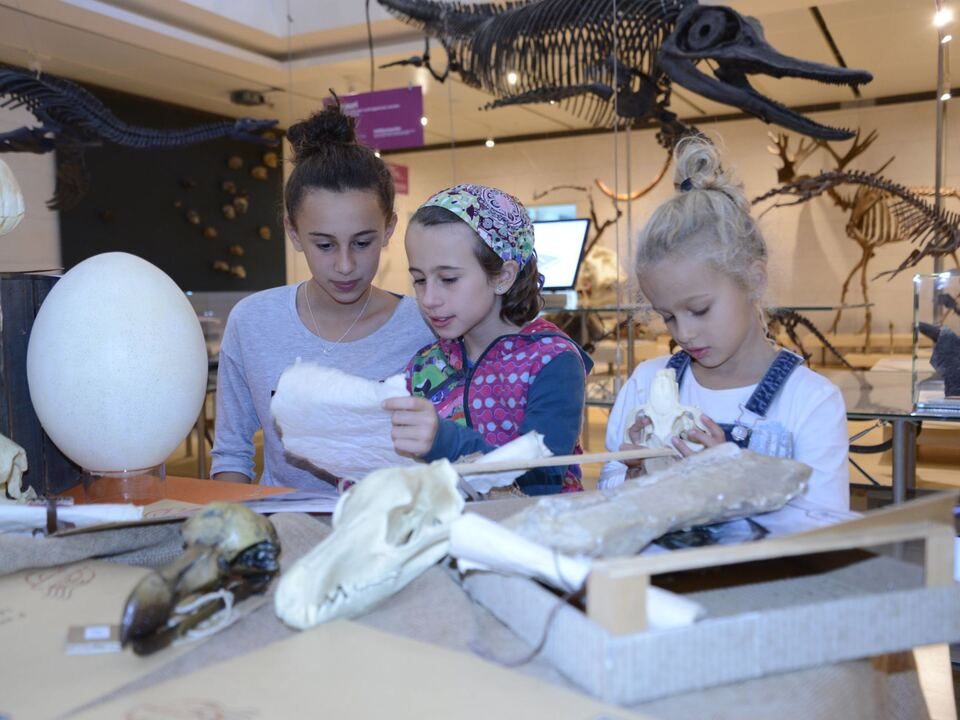 Twenty Kinder Archäologie