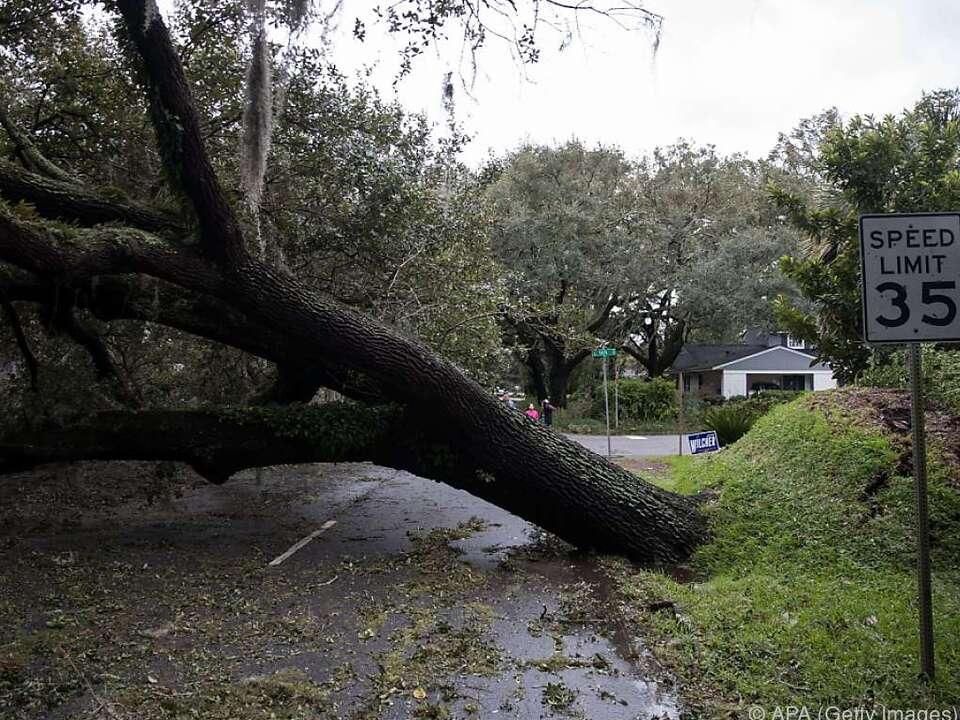 Umgestürzte Bäume verlegen die Straßen in Georgia