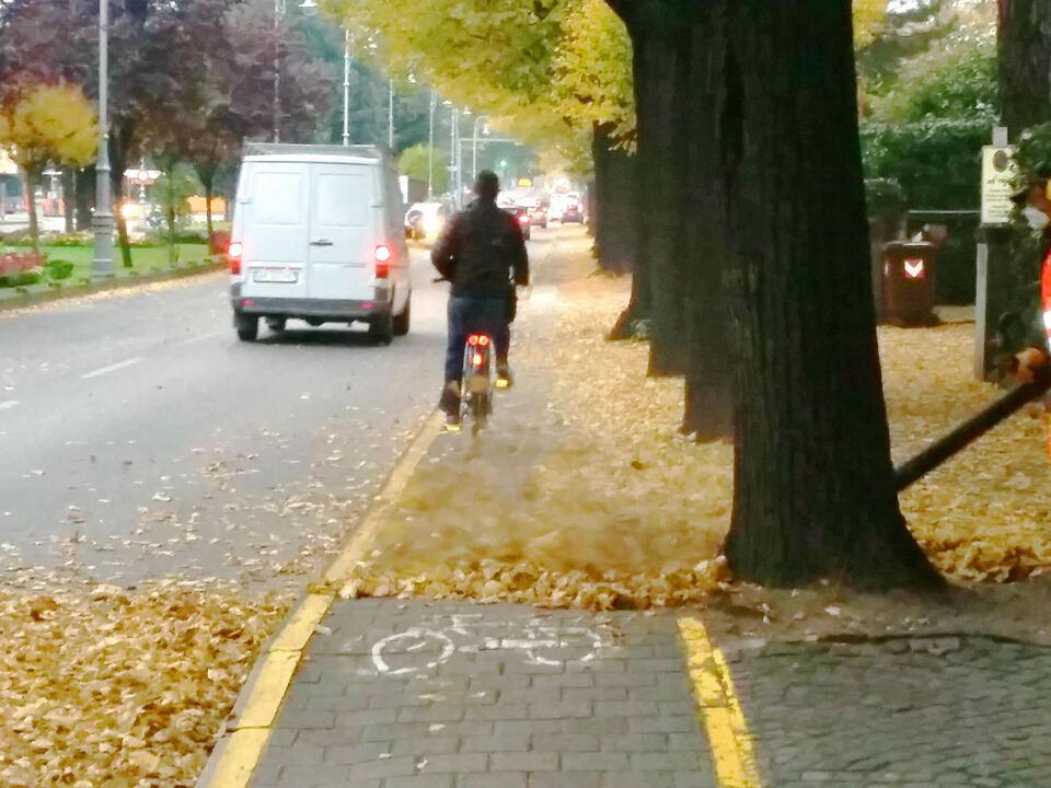 Motorbetriebene Handgebläse Laubbeseitigung Laub Straße