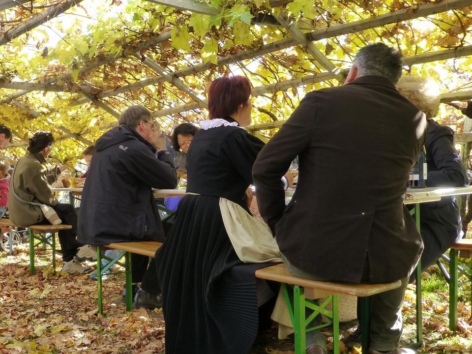 Kastanien essen Weinmuseum