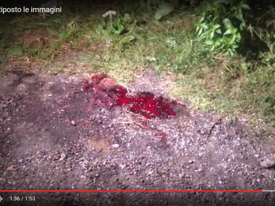 YouTube/Gazzettino di Giarre - Omicidio a Riposto le immagini