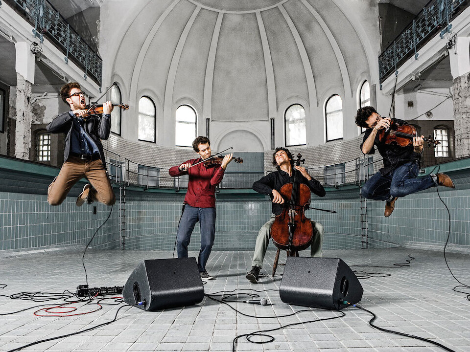Vision String Quartett