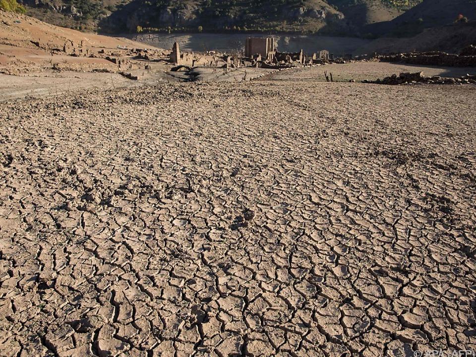 Wetterextreme wie Dürren oder Starkregen treten immer öfter auf