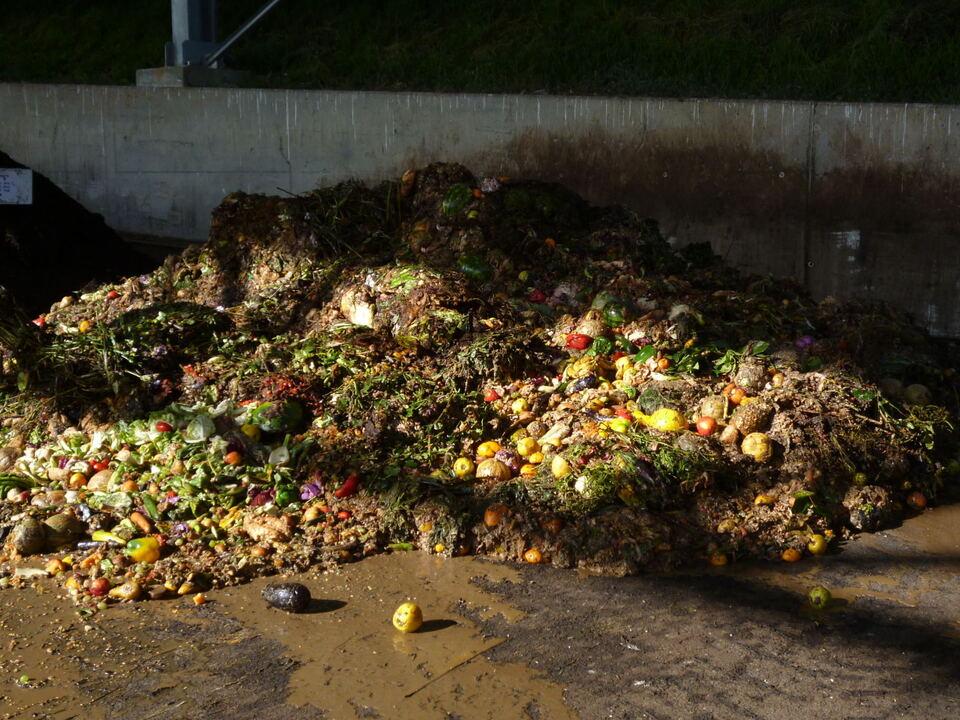 Müll Bioabfälle