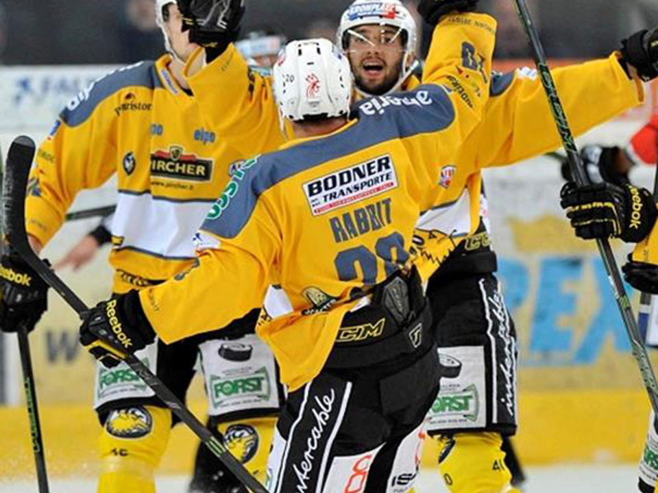 Alps Hockey League-Hockey