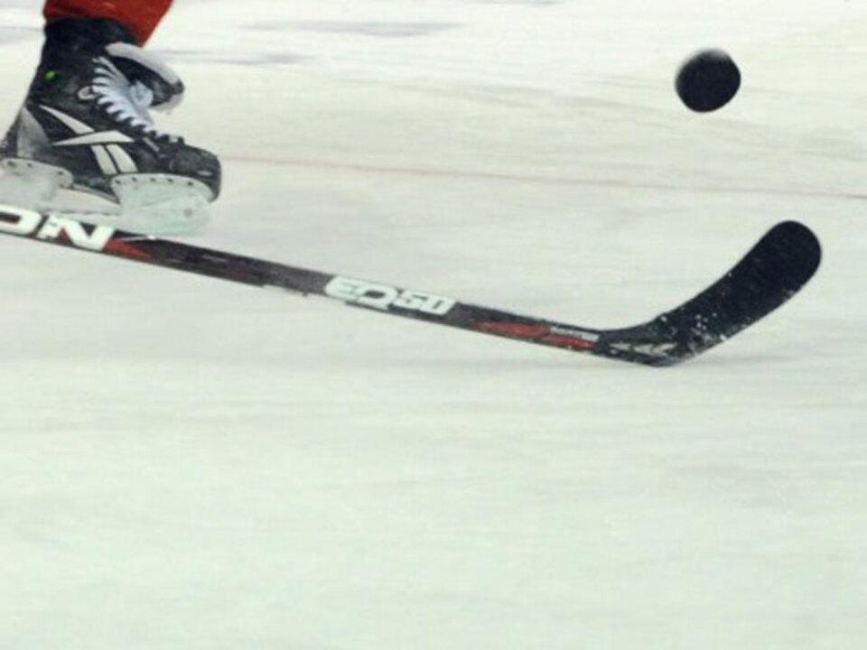 eishockey-leer-2_(Max-Patti