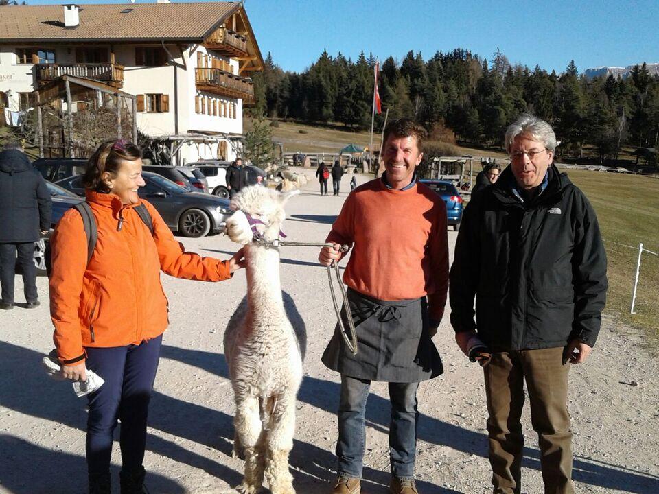 Gentiloni Kaserhof Alpaca