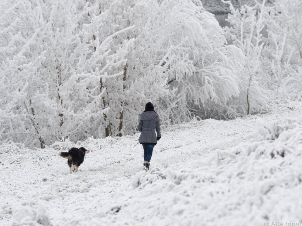 Kälte und Schnee kommen auf Österreich zu