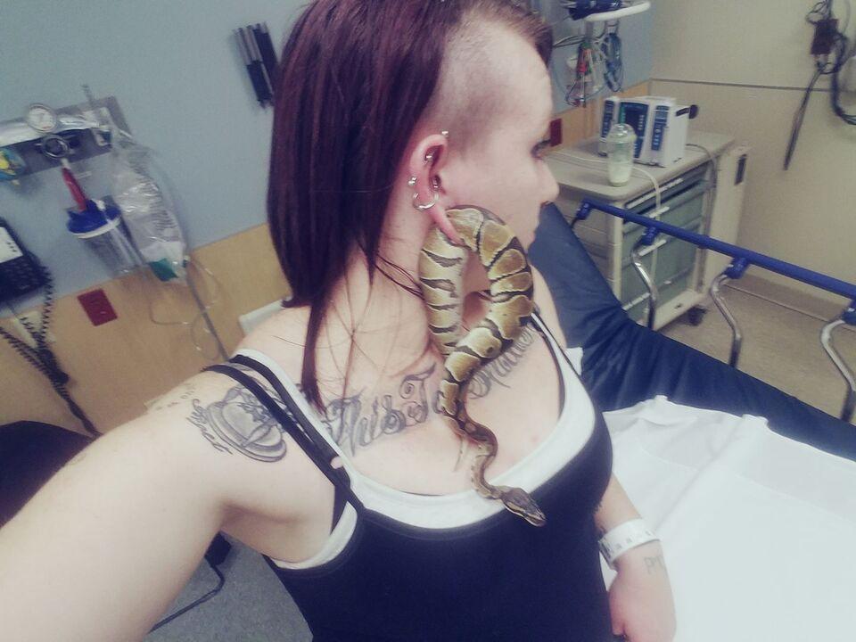 Schlange bleibt junger Frau im Ohrloch stecken