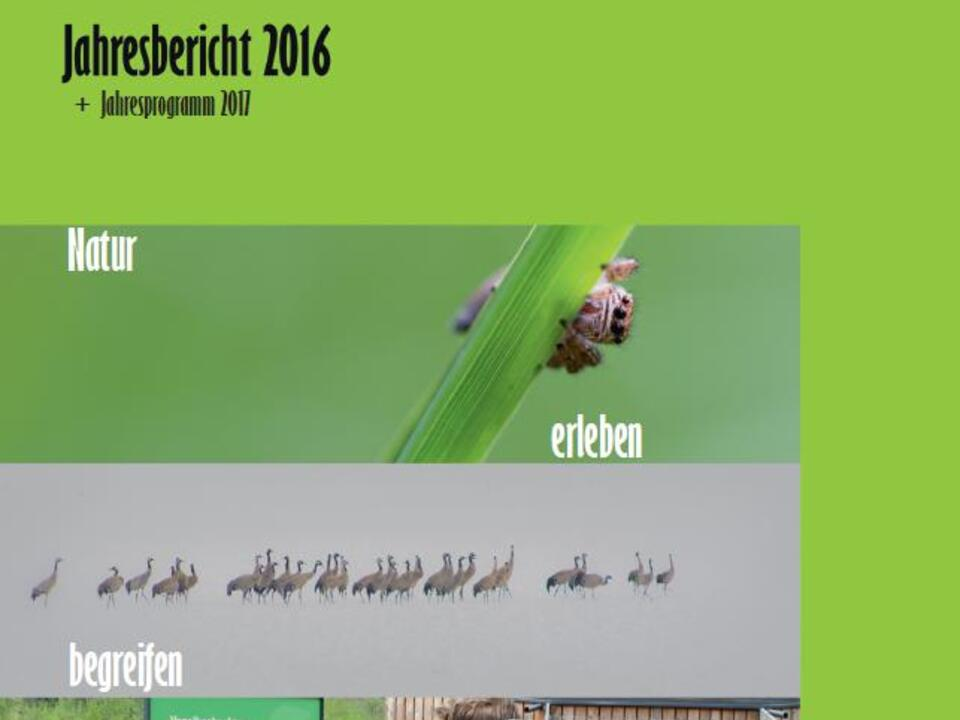 cover 2016 facebook (1)