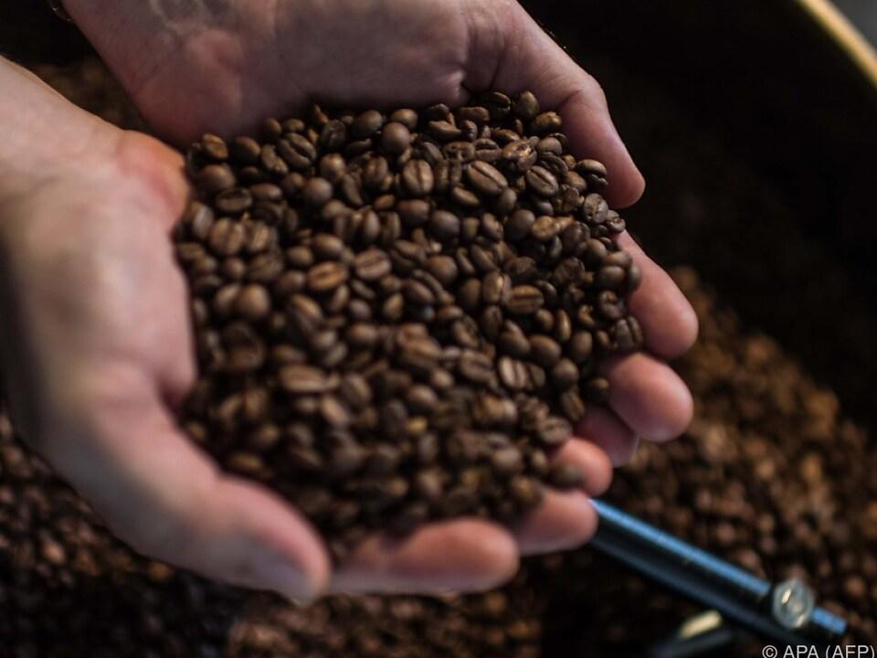 Der bessere Kaffee geht in den Export