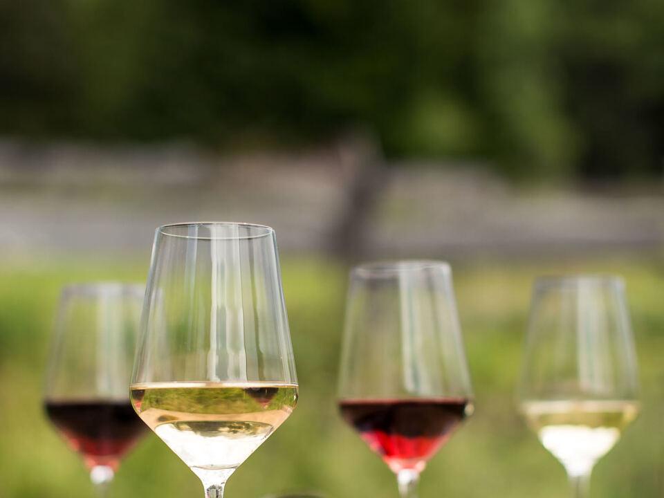 Wein Weißwein Rotwein