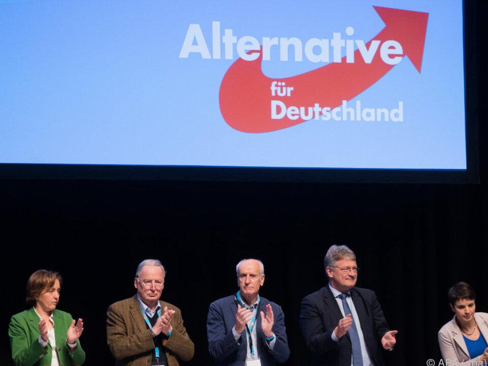 Die AfD will im Herbst den Sprung in den Bundestag schaffen