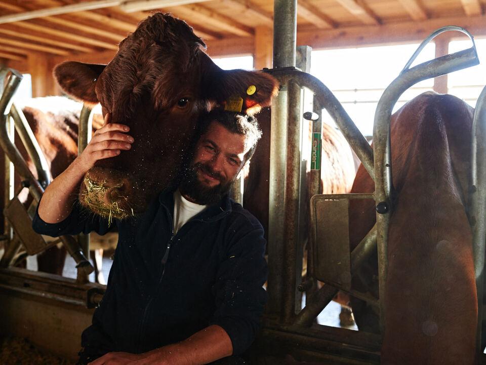 Artgerechte Tierhaltung/Tantscherhof Lajen/Bauernhof/Kuh
