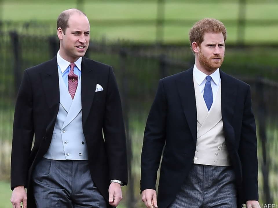 Die Prinzen William und Harry