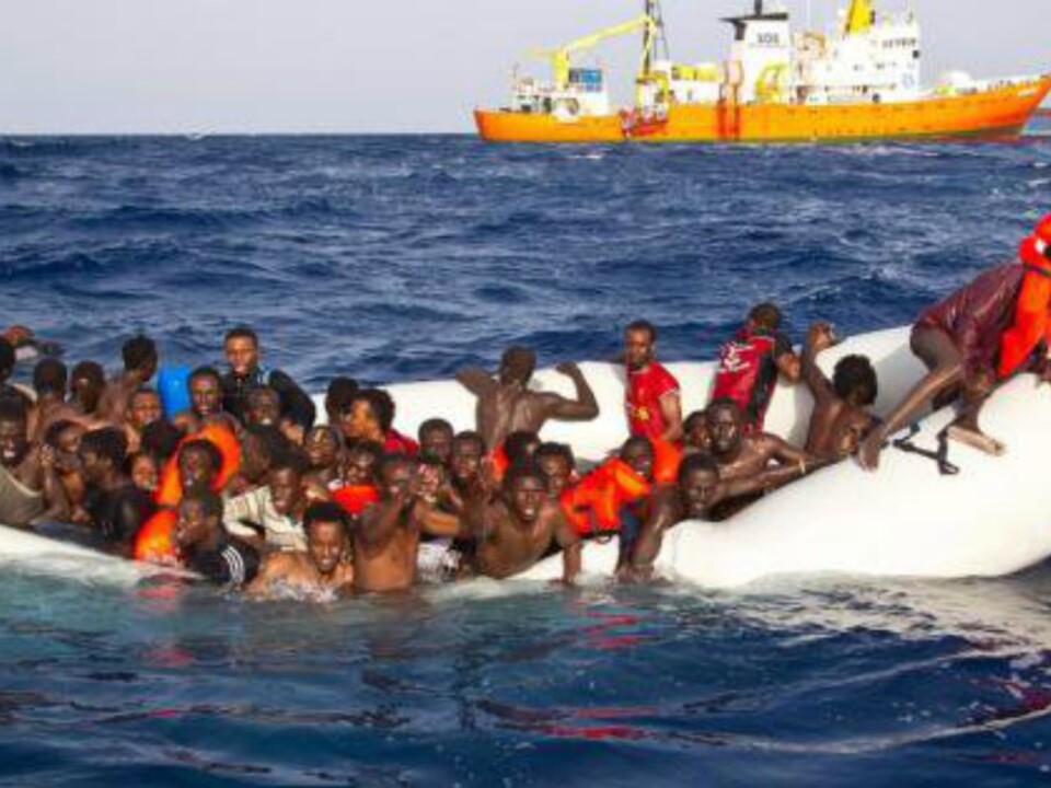 twitter-migrantiii