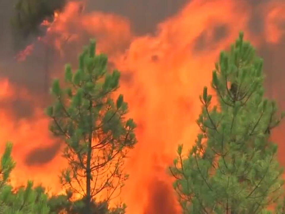 Weitere Tote bei Waldbränden in Portugal