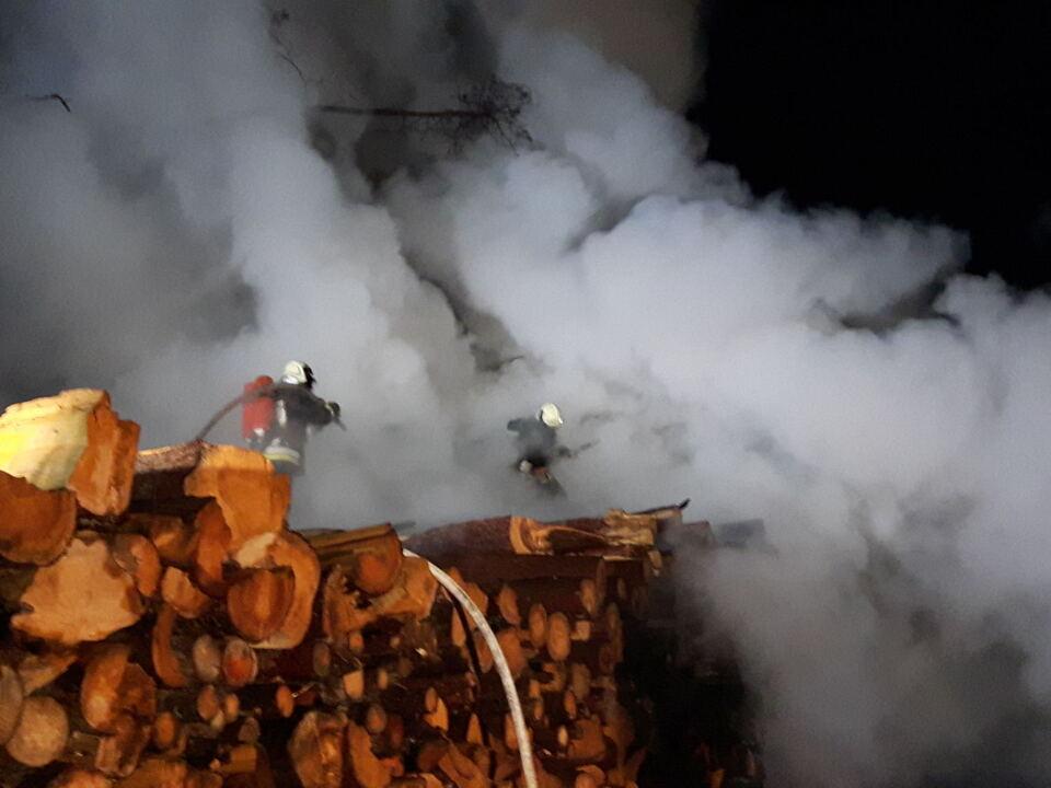 Brand Holz Lajen