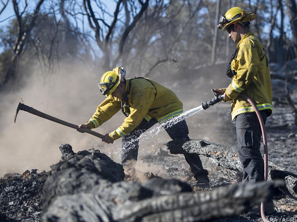 Dutzende Feuer zerstörten weite Landflächen