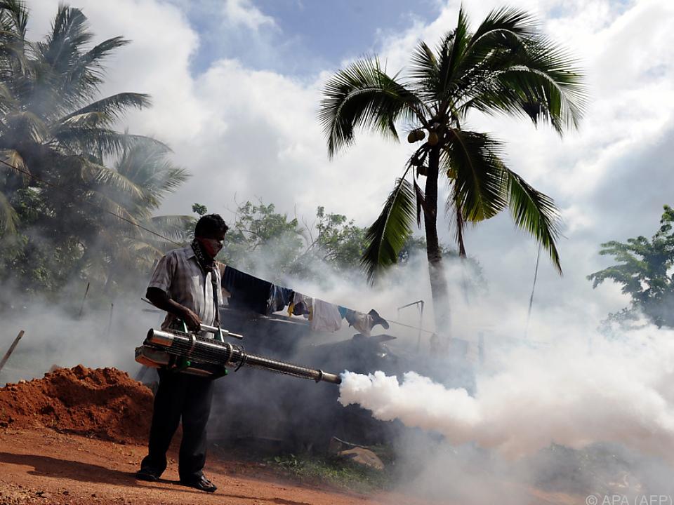 Kampf mit Insektiziden gegen die Stechmücken