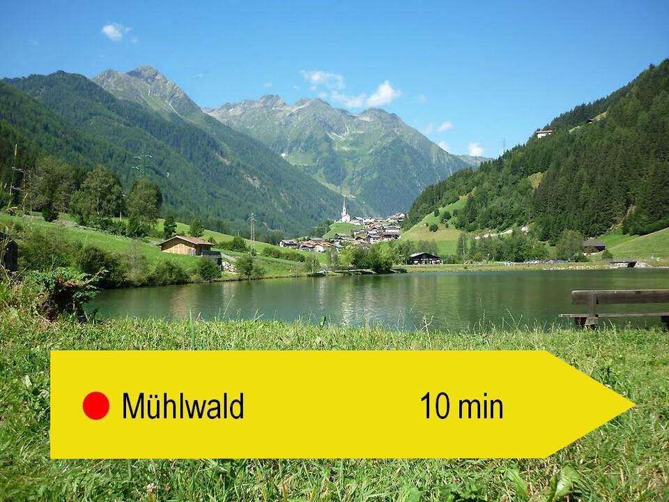 muhlwald_schild