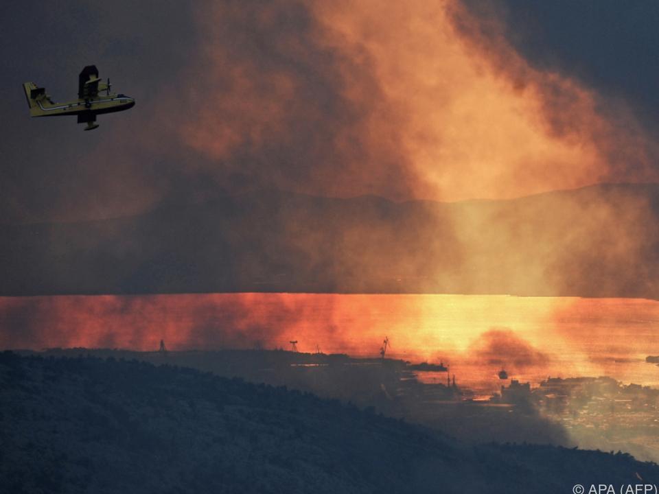 Rund 4.500 Hektar Wald wurden in Kroatien vernichtet