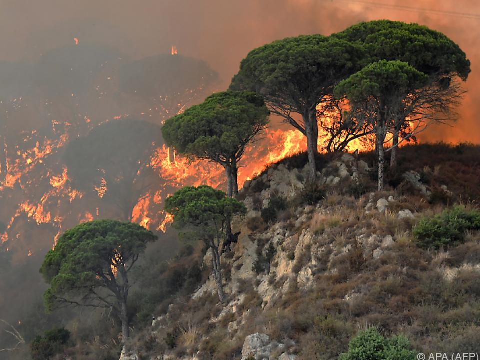 Strenge Strafen für Brandstiffter angekündigt